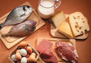 alimentos origen animal
